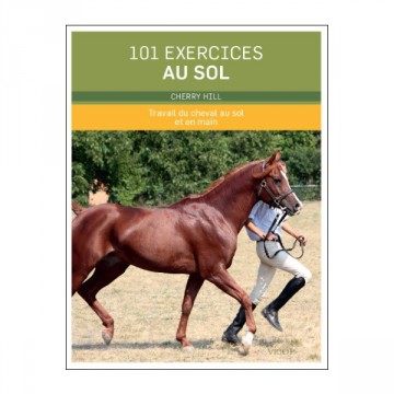 101 exercices au sol