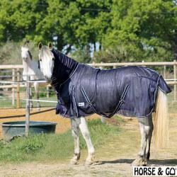 Chemise anti-mouche avec cou Horse & Go