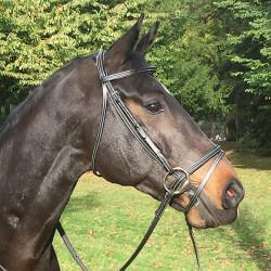 Bridon surpiqué Horse & Go