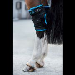Guêtre de soin pour Jarret Ice Vibe Horseware
