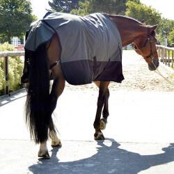 Chemise imperméable doublée Horse & Go