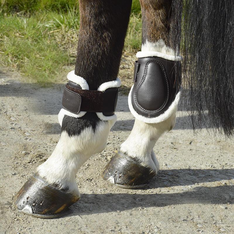 Protège-boulets mouton TIME Rider