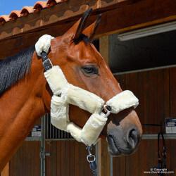 Licol nylon et mouton Confort Time Rider Sport