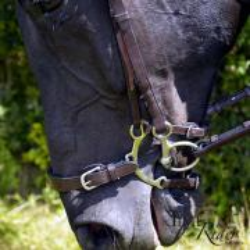 Muserolle à levier TIME Rider Platinium - Bouclerie Argent