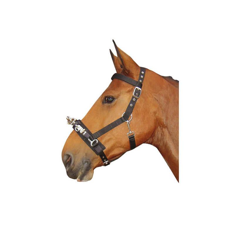 Caveçon nylon Harry's Horse