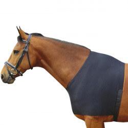 Poitrinière lycra Harry's Horse